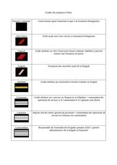 Fichier PDF grades des pompier d altis 1