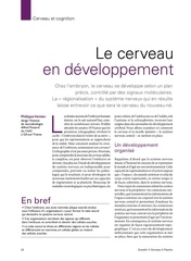 developpement cerebral