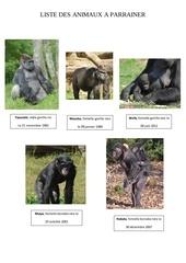 liste des animaux a parrainer avec photos