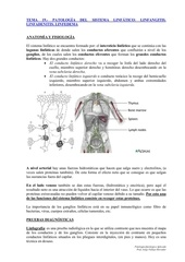 Fichier PDF tema 19 patolog a linf tica