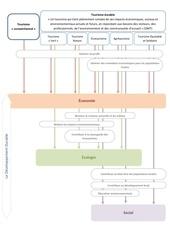 activite 2 carte conceptuelle