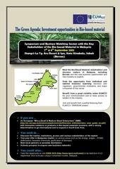 biomass flyer draft 3