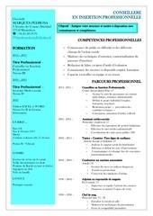 cv pedrosa 2015 candidature