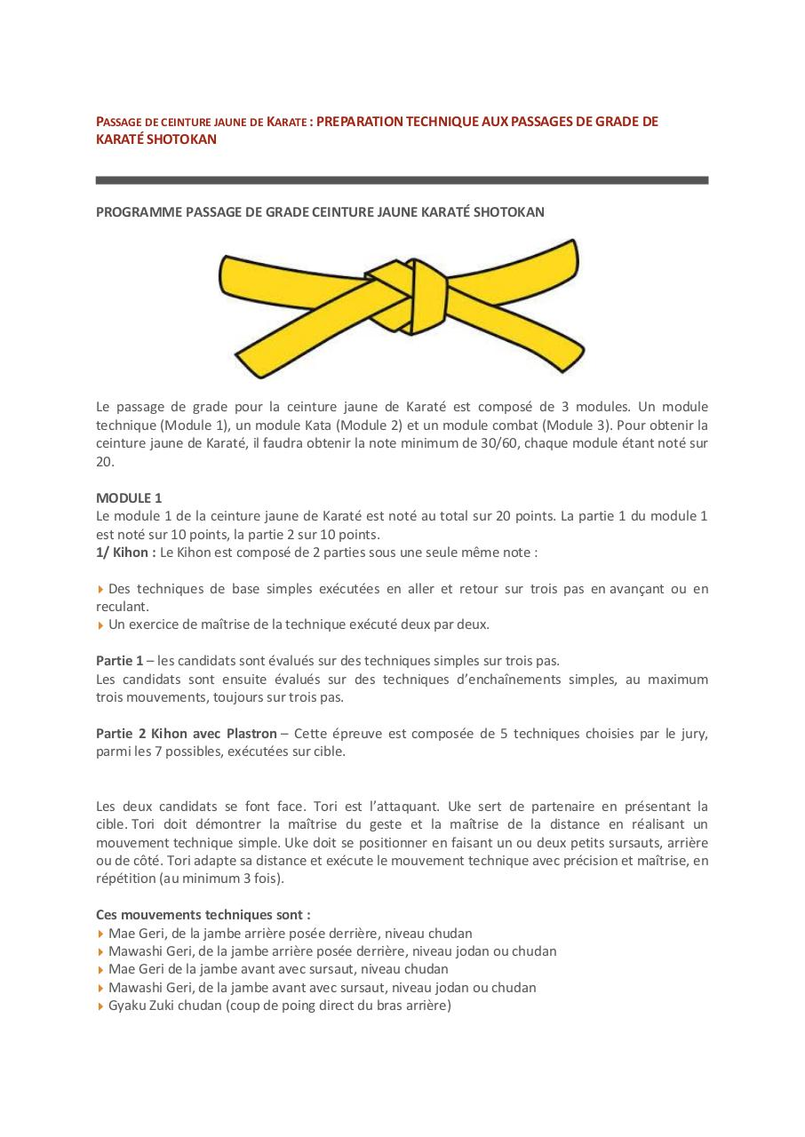 b9566e0347cb Passage de ceinture de Karaté.pdf - page 1 13