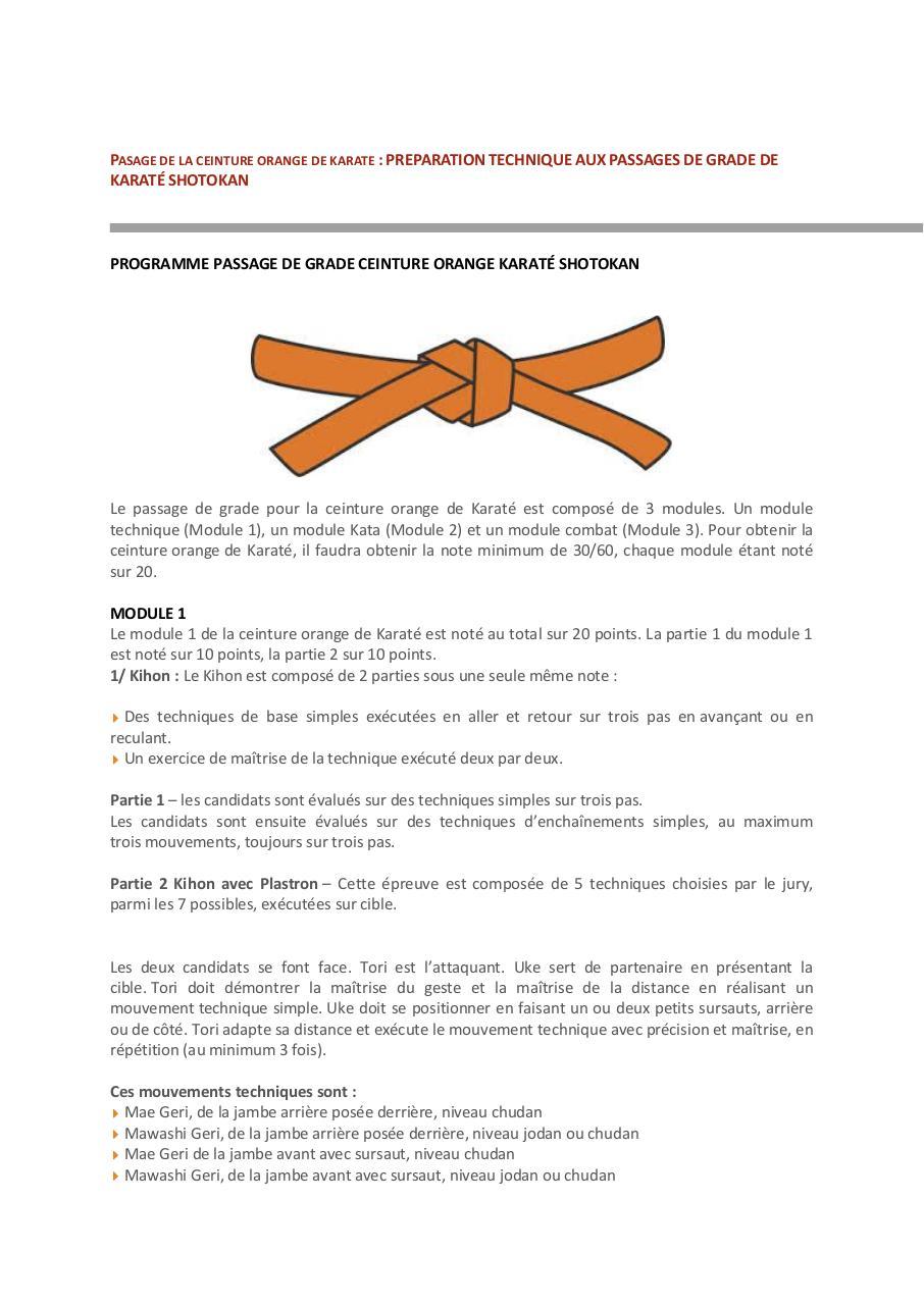 e8c6b941704 Passage de ceinture de Karaté.pdf - page 3 13