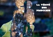 dossier pinocchio