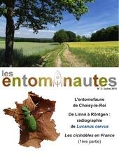 les entomonautes 2