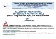 calendrier previsionnel examens professionnels 1