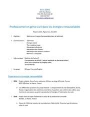 Fichier PDF cv boris denis 2015