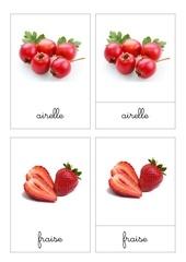 Fichier PDF nomenclature les fruits rouges