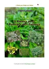 5 plantes pour proteger mes cultures