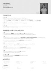 Fichier PDF cv sacha gobelin