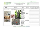 fichecorrepondancephytosanitaireespvert2015