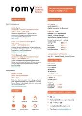 Fichier PDF romy cv