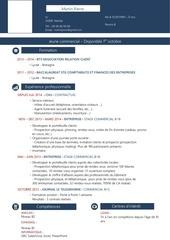 Fichier PDF martin pierre