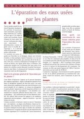 l epuration des eaux usees par les plantes