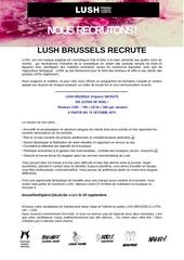 Fichier PDF annonce lutins 2015