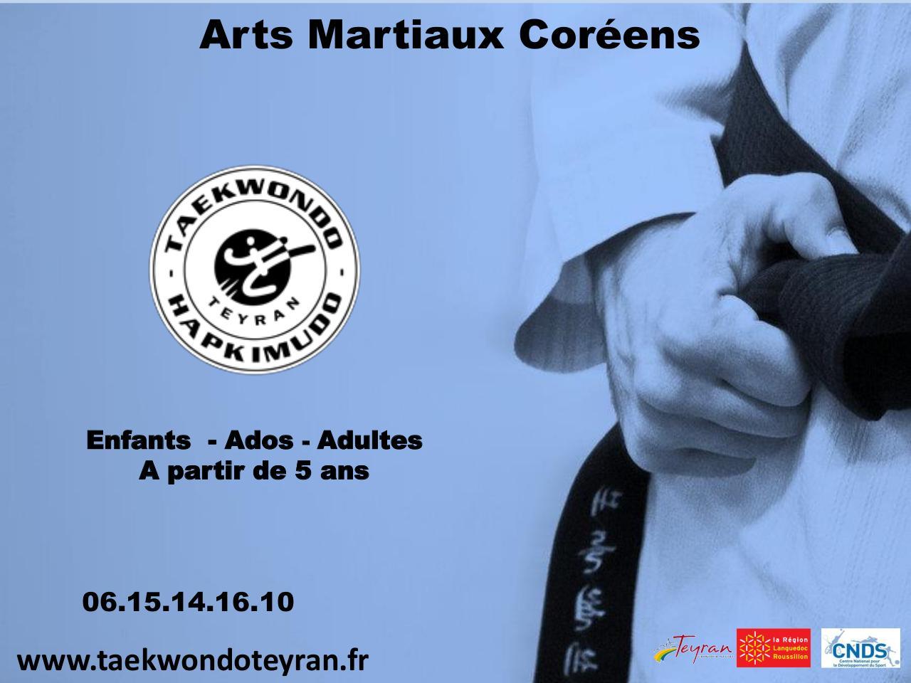 Pr sentation powerpoint par l a marchadier flyer 3 for Arts martiaux pdf