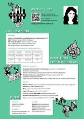Fichier PDF cv 1