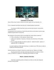 Fichier PDF histoire viktor bout