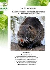 problematique ragondin et rat musque en franchecomte