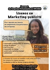 appel a candidatures licence marketing publicite 2015 2016