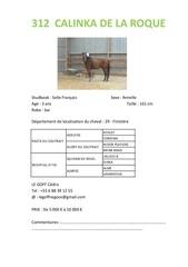 foals et 3 ans 1