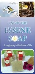Fichier PDF the essene soap web