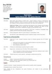 Fichier PDF cv 2015 remy poitevin