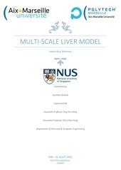 Fichier PDF internship repport national university of singapore
