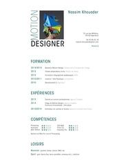 Fichier PDF khouader nassim cv