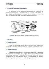 protozoaires 2eme partie