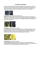 Fichier PDF cepages