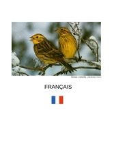 faune europe enne francais standard