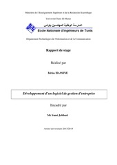 rapport stageingenieur