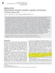 Fichier PDF art3 mitochondrial dynamics cancer oncogene 2013