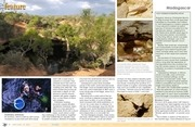 Diving Sinkholes and Caves on the Mahafaly Plateau.pdf - page 4/10