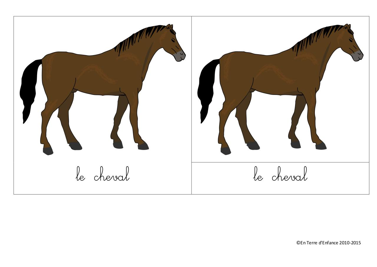 Aperçu du document le cheval.pdf - page 1/10