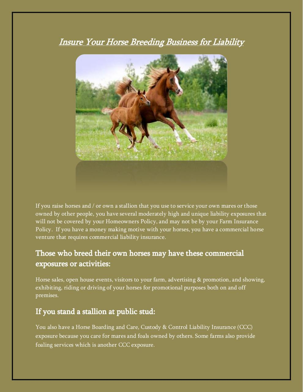 Horse Insurance.pdf - page 3/4