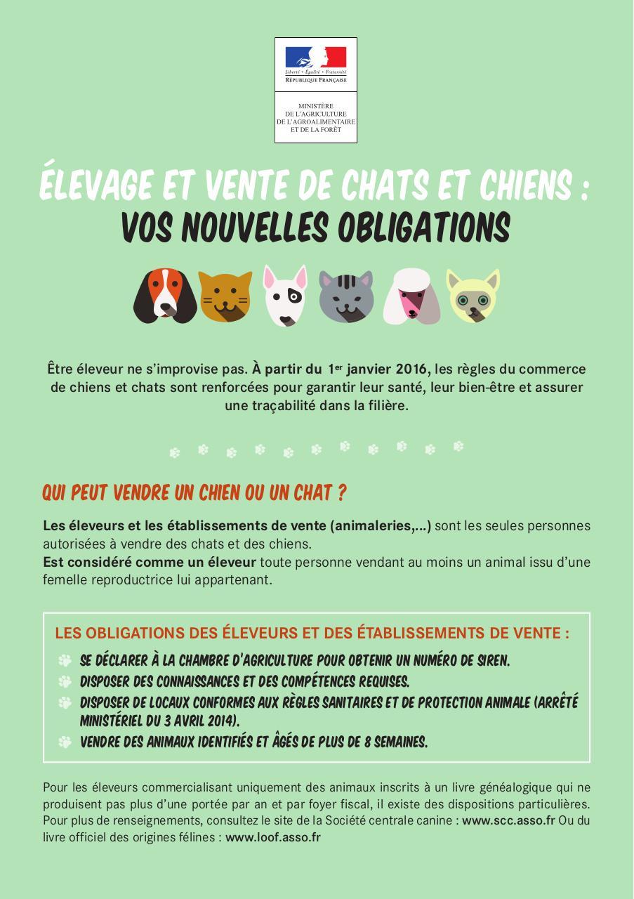 Nouvelles Obligations Elevage Et Vente De Chats Et Chiens Fichier Pdf