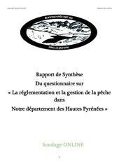 Fichier PDF synthese questionnaire format pdf