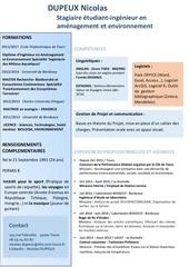 Fichier PDF cv dupeux nicolas 1
