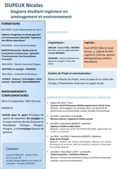 Fichier PDF cv dupeux nicolas