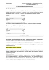 Fichier PDF 702789132 les colorations de routine