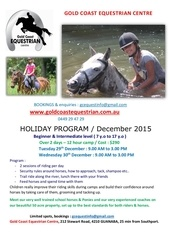 gcec december 2015 holiday camp