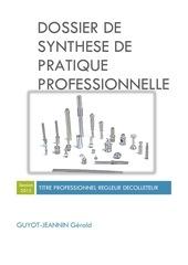 dossier de synthese de pratique professionnelle 1