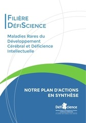 Fichier PDF defiscience plan d actions synthese juin 2015