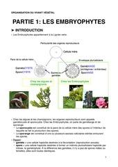 ovv p1 c1 mousses bryophytes au sens large pdf