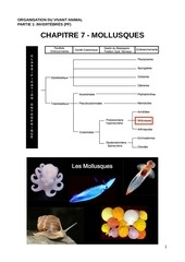 ova c7 mollusques pdf compressed