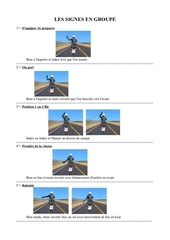 Fichier PDF les signes en groupe 2